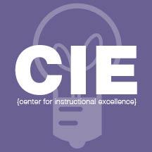 Introducing CIE Teaching Fellows