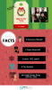 Ugly Sweater Infographic
