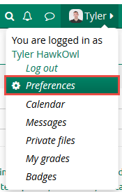 "Click on ""Preferences"""