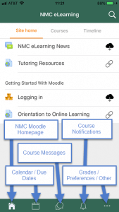 These icons will guide you to most of the actions and activities you should already be familiar with in Moodle.